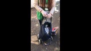 Síol na hÉireann Volunteer deliver food to elderly Dublin!